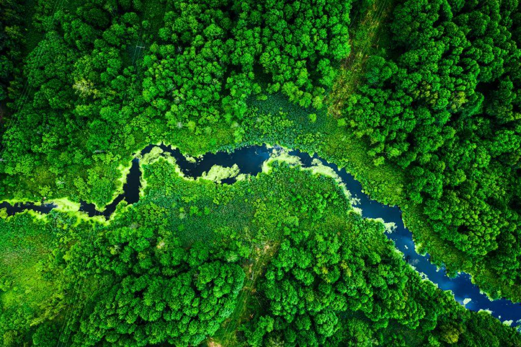 Aufnahme eines blauen Flusses durch grüne Landschaft von oben